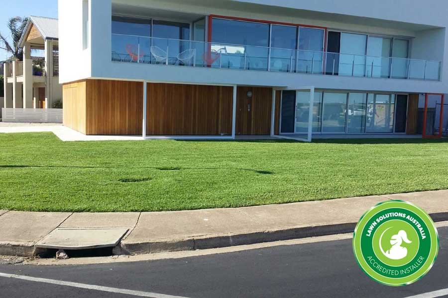 Lawn Installation, Grass Supplier & Landscaper Adelaide - Lawn