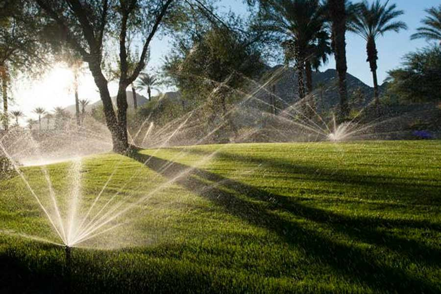 Irrigation Installer Adelaide - Efficient Watering